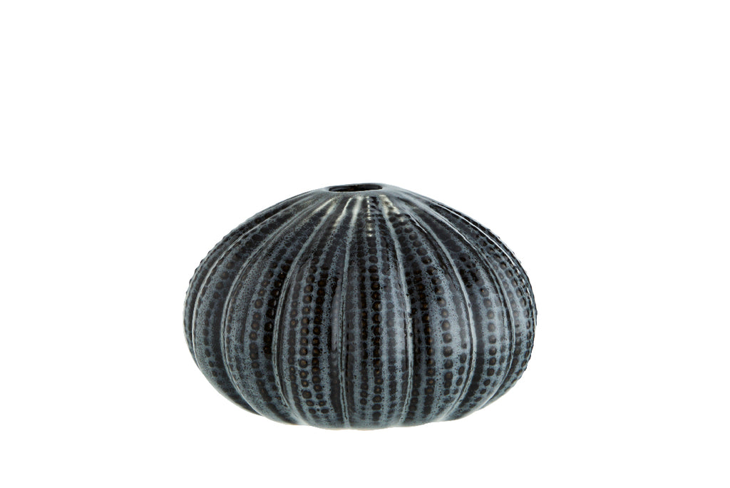Dark Grey Sea Urchin Vase