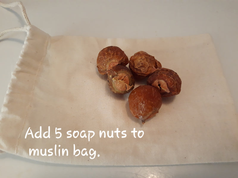 Soap Nuts Laundry Detergent Alternative