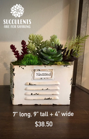 Whimsy Faux Succulent File Box