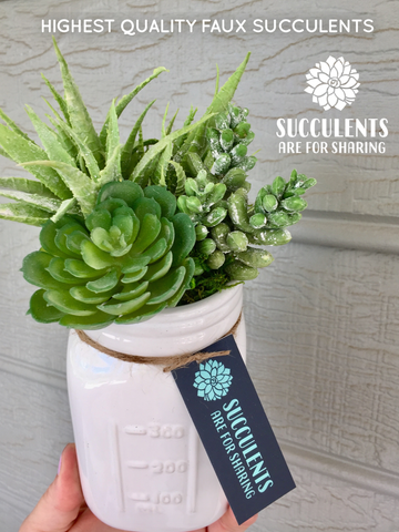 Cheerful Mason Jar Succulent Arrangement