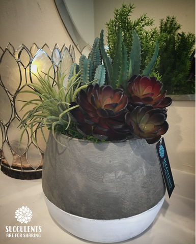 { Desert Love Faux Succulent Arrangement }