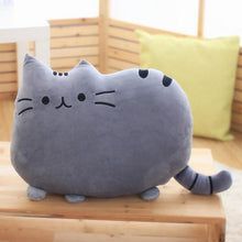 Load image into Gallery viewer, Cat Pillow - MyTopCat