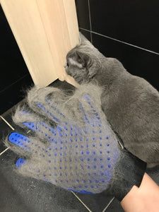 Pet Grooming Glove - MyTopCat