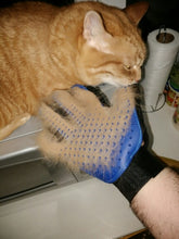 Load image into Gallery viewer, Pet Grooming Glove - MyTopCat