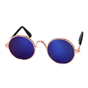 Cool Cat Shades - MyTopCat