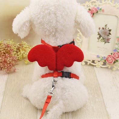 Angel Back wings Pet leash
