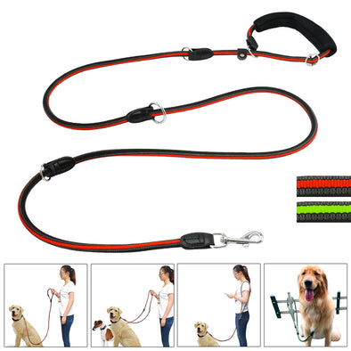 Heavy Duty Nylon Pet Leash