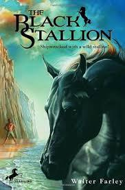 The Black Stallion CCQ Workbook (Reading Level T - 930L)