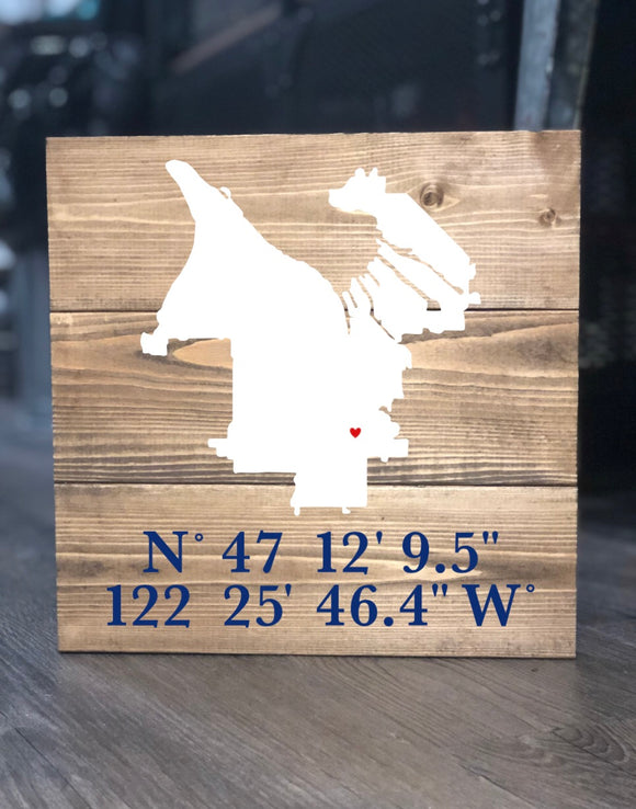 City Map Silhouette with Coordinates