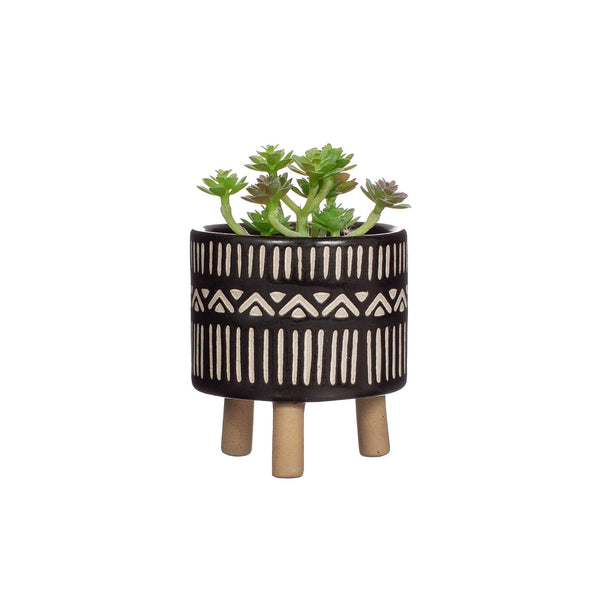 Small leggy planter