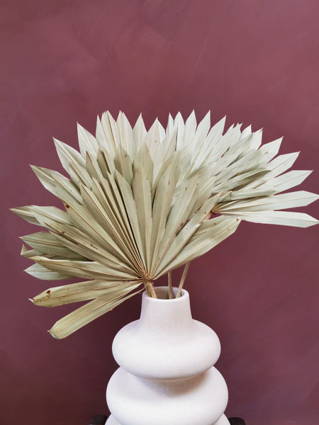 5 natural dried palm leaves - Pavot blue Interiors
