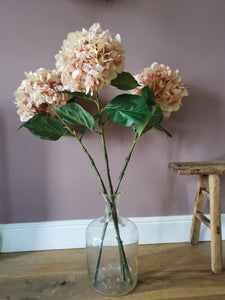 A bunch of large  hydrangea pink heads - Pavot blue Interiors