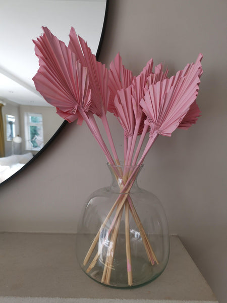 dried palms natural pink