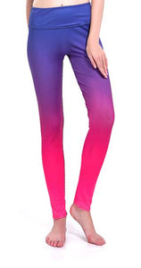 Sunny Lily  DIVINE PINK HIGH WAIST FASHION LEGGINGS