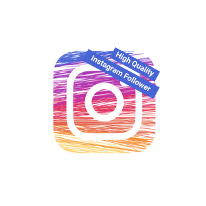 100 High Quality Instagram Follower kaufen