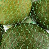 "PLASTIC MESH BAG GREEN 24"", Bag Filled With Limes Detailed View"