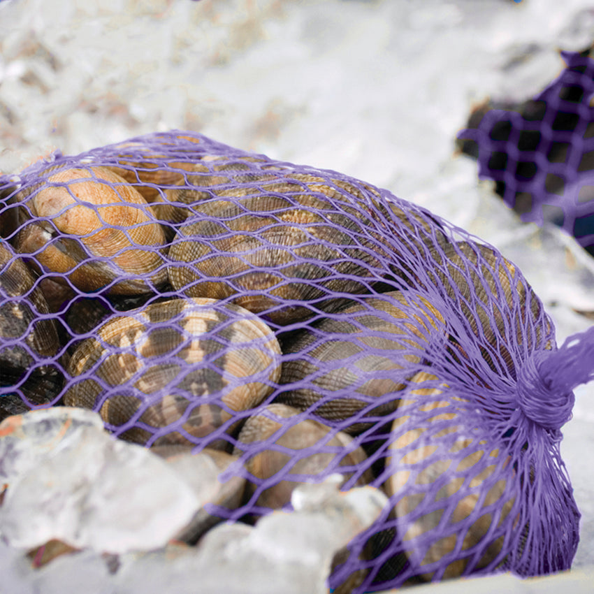 "PLASTIC MESH BAG PURPLE 24"", Bag Filled With Clams"