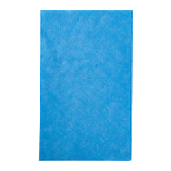 Blue Foodservice Towel 13