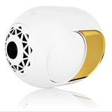 Golden Speaker - High-End Wireless Speaker - 108 dB-Free Shipping - HiSheep
