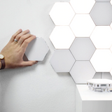 HEXA MOTION LIGHT CANVAS Buy More Get More Discount - HiSheep
