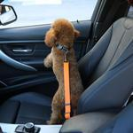 PET SEAT BELT - HiSheep