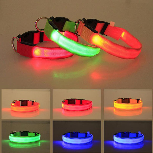 Glowing LED Dog Collar Light - HiSheep