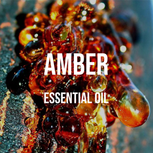 Amber Essential Oil