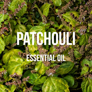 Patchouli Essential Oil (Pogostemon Cablin)