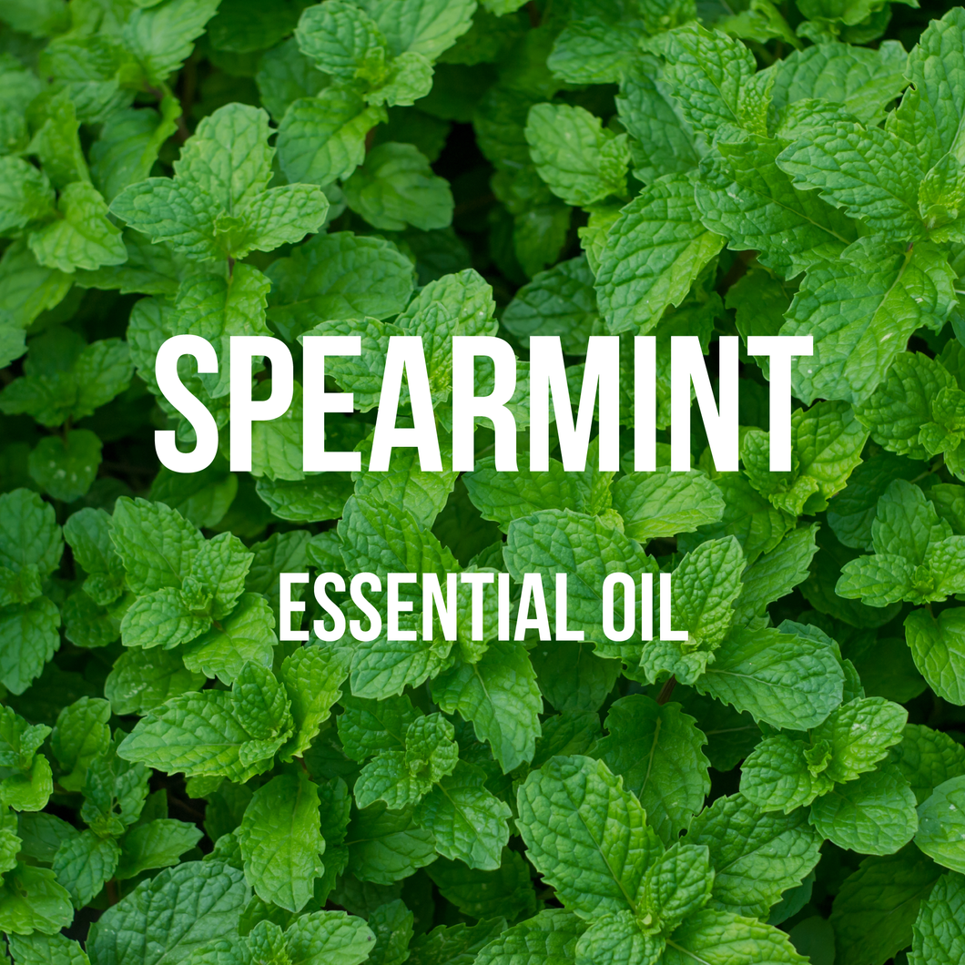 Spearmint Essential Oil (Chinese)