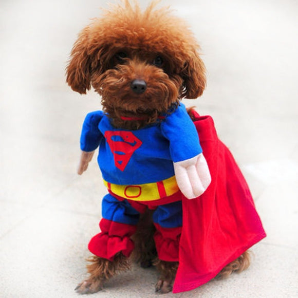 Super Hero Halloween Costume for Dogs