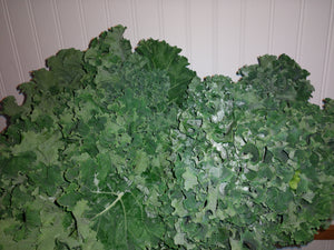 Kale, curly, Farm Fresh RI
