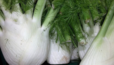 Fennel, organic, full sized- 2 per bunch