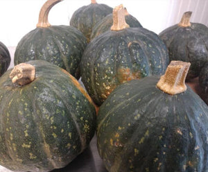 Squash, BLUE kabocha, price each