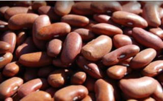 Beans, dried Red Kidney 2# bag