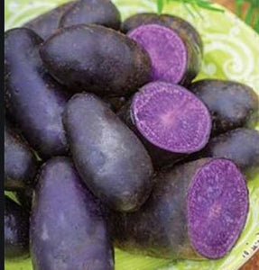 Potatoes, Magic Molly Purple- 3# bag