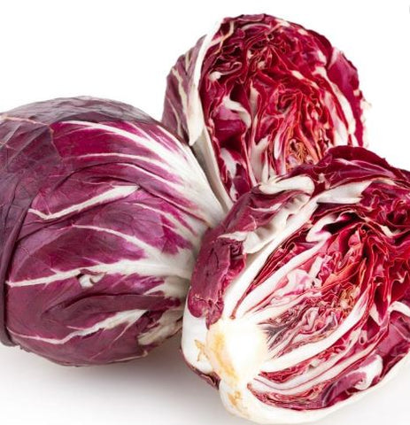 Radicchio, chioggia - Certified Organic NEW price per head