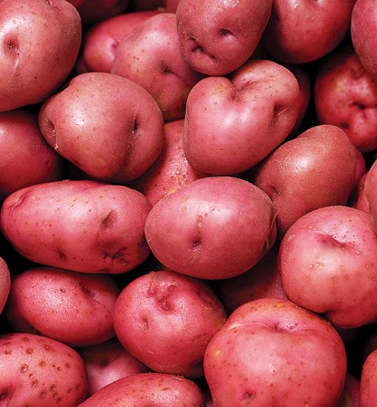 Potatoes, BABY red - 3# bag