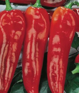 Peppers, Italian Red Sweet 1# OVERSTOCK - SAVE