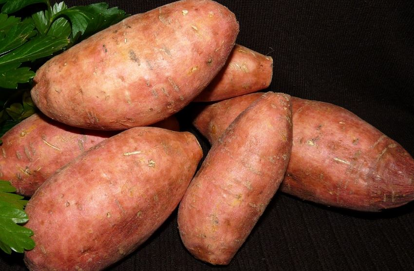 Sweet potatoes, organic. Mixed sizes, price per #
