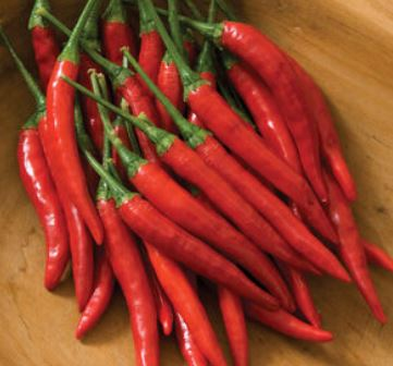 Peppers: Thai Chili - fresh organic