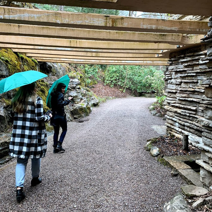 Can You Take Photos at Fallingwater?