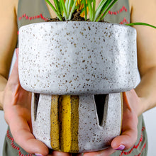 Load image into Gallery viewer, handmade ceramic planter