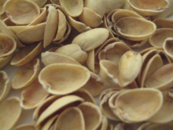 Natural Pistachio Shells DIY Crafts | Reduce Reuse Upcycle