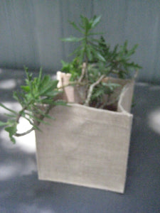 "Natural Burlap Plant Pot 6"" Inch Cube Lined Centerpiece Container"