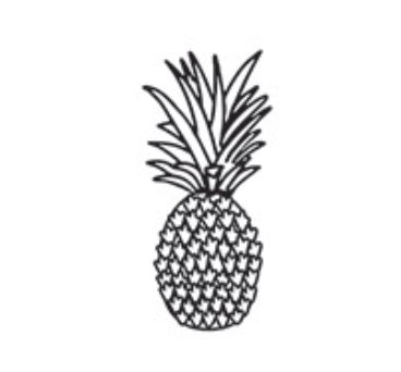 Darice Large Pineapple Ananas Embossing Folder