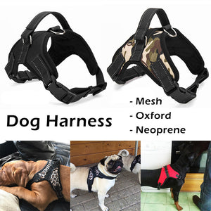 Pet Harness for Large Dog with k9 Glowing Led Collar