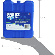 Load image into Gallery viewer, Freez Pak Large Reusable Ice Pack