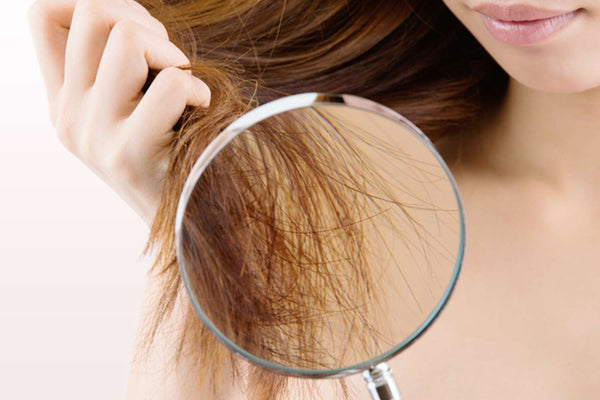 repair dry and damage hair from chlorine - salonphactor image