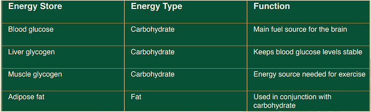 Horse body energy store, type and function