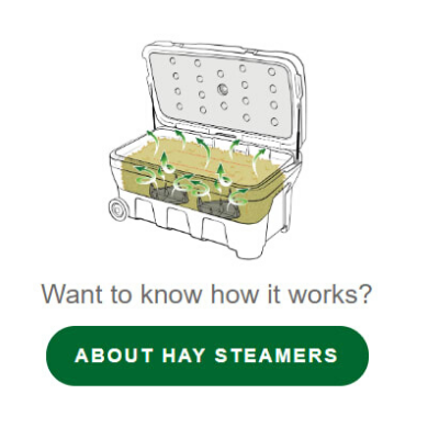 how Haygain steamer works